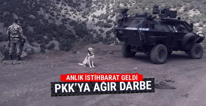 Adıyaman'da PKK'ya ağır darbe