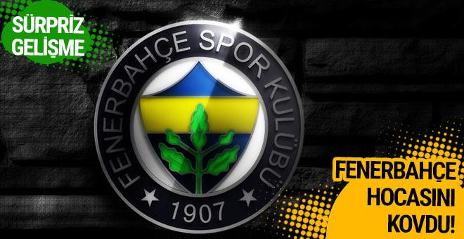 Fenerbahçe kadın basketbol takımının hocasını kovdu
