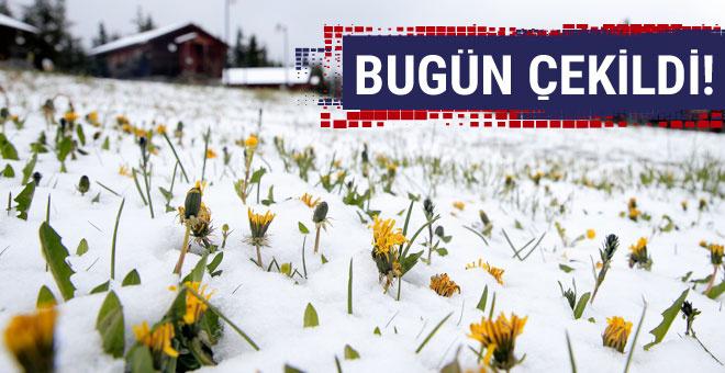 İnanılır gibi değil! Mayıs'ın ortasında kar yağdı