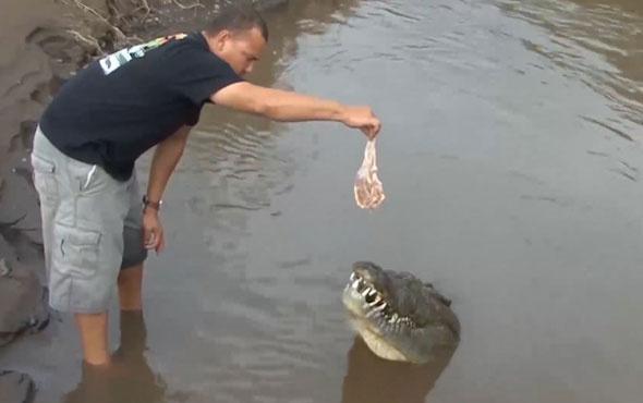 Dev timsahı elleriyle besledi