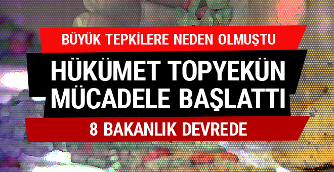 Hacettepe Üniversitesi, Kadınların Doğurganlık Tercihini Araştırdı 16