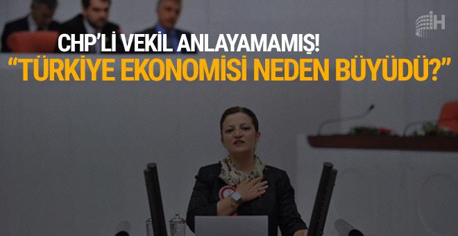 CHP'li vekil anlayamamış! 'Türkiye ekonomisi neden büyüdü?'