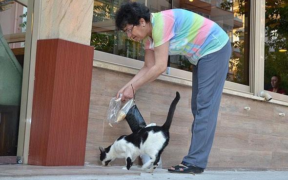 Hem sağlığı için yürüyor hem de sokak hayvanlarına bakıyor