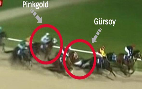 İzmir'deki at yarışında talihsiz kaza! Ayağı kırıldı, sahada iğneyle uyutuldu