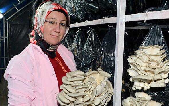 Kadın girişimci işleri büyüyünce eşini işe aldı