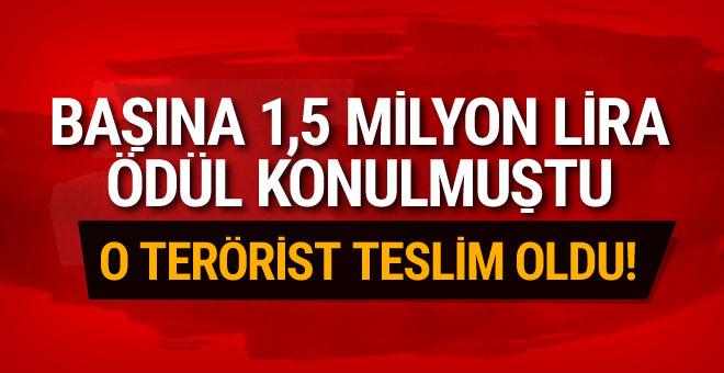 1.5 milyon lira ödülle aranan terörist teslim oldu!