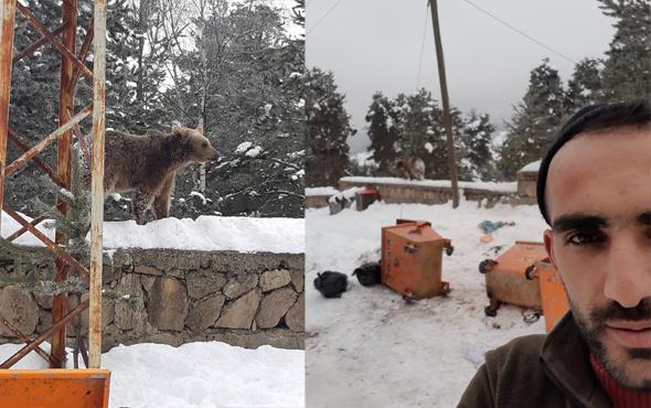 Sarıkamış'ta şehir merkezine inen ayılarla  selfie çektiler