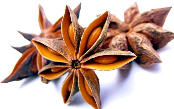 Şifa saçan bitki! İnanılmaz faydaları saymakla bitmiyor