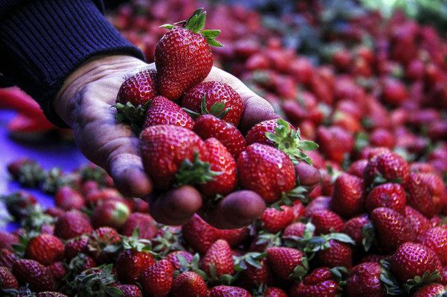 Bahar yorgunluğunu önleyen besinler