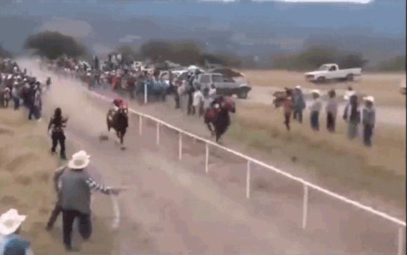 Görenler dehşete düştü! Yarış atının feci sonu...