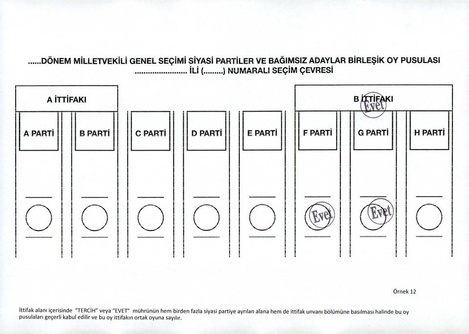 Hangi oylar geçerli hangi oylar geçersiz? İşte örnek oylar