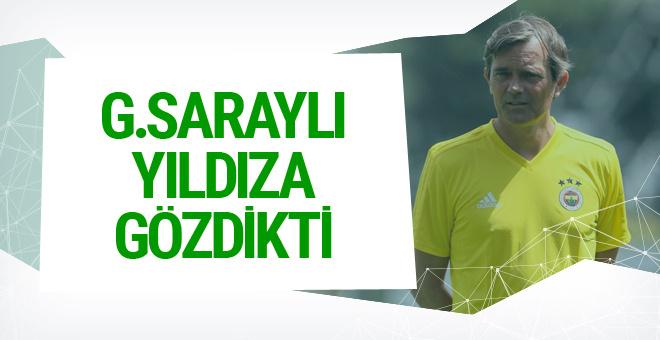 Phillip Cocu'nun gözdesi Galatasaraylı yıldız