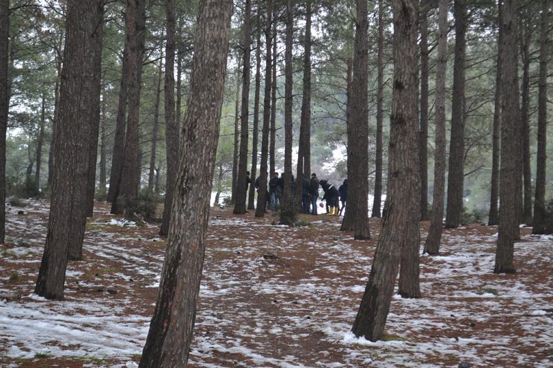 Kestane toplamak için ormana gitti poşeti açınca şoke oldu