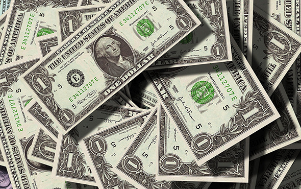 Vatan mı dolar mı? Süleyman Özışık yazdı