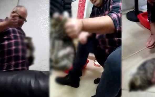 Kan donduran görüntüler! Kediyi sopayla dövdü