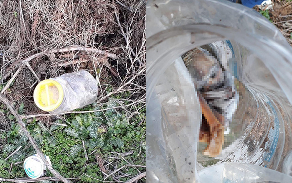 Kan donduran olay: Plastik bidonda bebek cesedi!