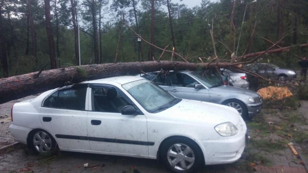 Antalya'da hortum felaketi! Yollar kapandı ağaçlar devrildi ölü ve yaralılar var
