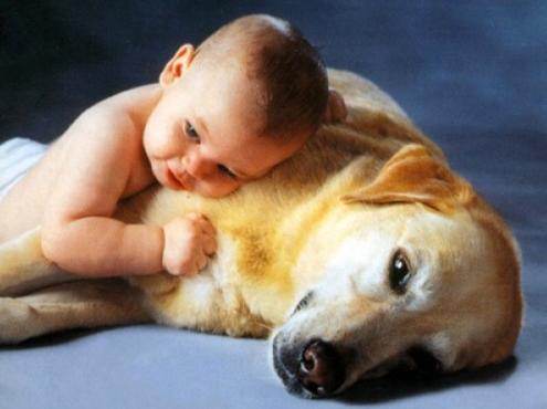 köpek sevgisi ile ilgili görsel sonucu