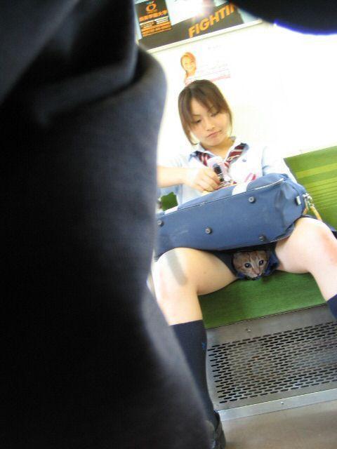 мама с доченкой симают олеждуду с репедгом перед камерой фото