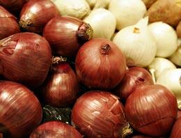 Soğan fiyatları gelecek yıl da cep yakacak