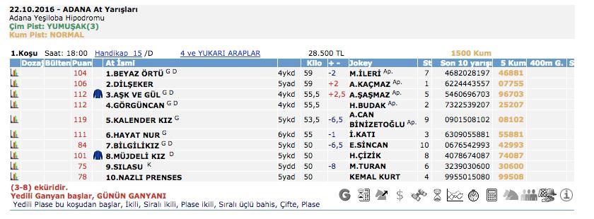 22 Ekim 2016 Cumartesi Adana at yarışı bülteni ve tahminleri