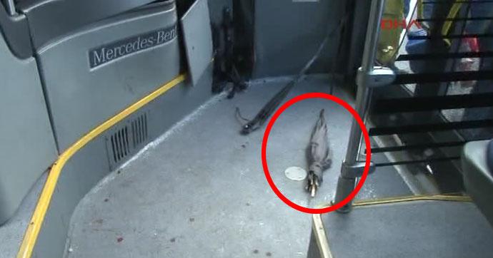 Metrobüs Şöförüne Saldırı Anı Kameralarda