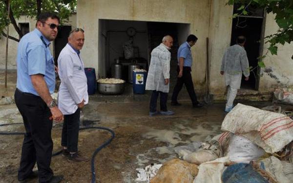Denizli'de kaçak sakatat işleme tesisinde şok edici manzara - Sayfa 4