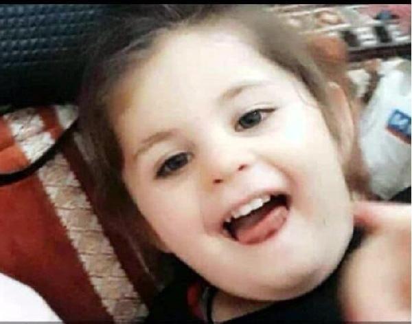 Leyla Aydemir'in ölümün ardından yürek yakan gerçek! Bakın katiller neler yapmış - Sayfa 2