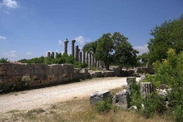 Diocaesarea Antik Kenti'nin dini merkezi Zeus'a adanan tapınak gün yüzüne çıkarılıyor! - Sayfa 3