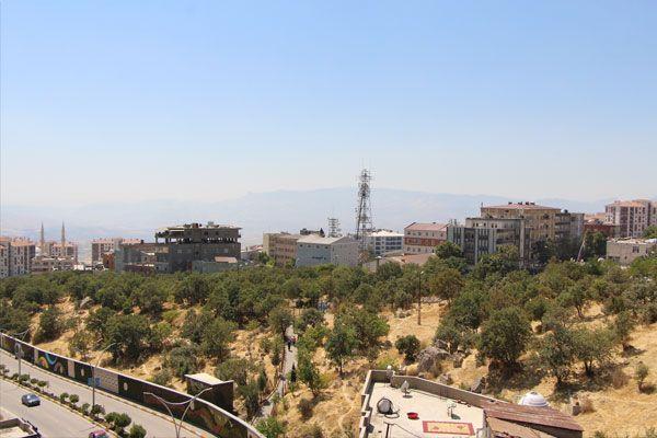 Gabar Dağı'nda bulunanlar 45 milyon yıllık çıktı Şırnak tarihini değiştirecek keşif - Sayfa 1