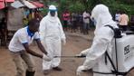 Ebola salgınından toplam 496 kişi hayatını kaybetti
