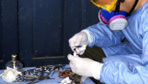 Lassa sıtması salgınından ölenlerin sayısı 83'e çıktı