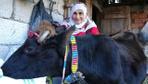 Trabzon'da 35 yaşındaki inekgörenleri şaşırtıyor
