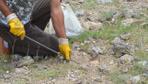Konya Ereğli'de taş ve otların altına tek tek bakıyorlar kilosu 80 liradan satılıyor