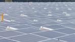 Facebook'tan ABD'nin en büyük güneş enerji santrali hamlesi