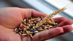 Türkiye tohumda 20 milyon dolar dış ticaret fazlası verdi