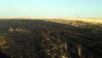 Tellere takılınca 20 dönüm buğday tarlası kül oldu