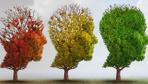 Alzheimer hastalığından koruyan besinler nelerdir? İşte yapmanız gerekenler