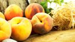 Rusya, içinde meyve sineği bulunan 20 ton nektarini Türkiye'ye iade etti