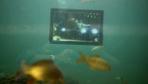 Bursa'da bugüne kadarki en farklı 15 Temmuz sergisi Su altında ilginç görüntüler