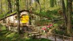 Kocaeli'de bulunan Avrupa'nın en büyük doğal yaşam parkı Ormanya film seti oluyor