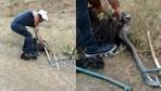 Sivas'ta yılanın kartalı boğmaya çalıştığı anlar kamerada