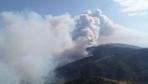 İzmir'de yangın büyüyor! Köyler boşaltıldı