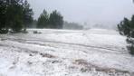 Kastamonu'da şiddetli dolu tarım arazileri büyük zarar gördü