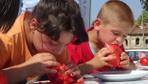 Domates Festivali'nde domatesi en hızlı yiyebilmek için yarıştılar