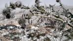 Mevsimin ilk karı Ardahan'a yağdı
