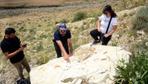 Ağrı Dağı eteklerinde kayaların içinde tespit edildi araştırma sonuçları herkesi şaşırttı