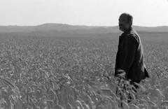 Kaplanoğlu'nun Buğday filmi galası Beştepe'de yapılacak