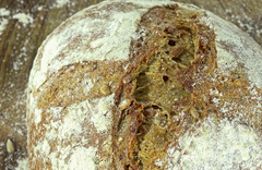 Geleceğin yemeği böcekli ekmekler mi?