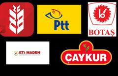 Varlık Fonu'na devredilen şirketler hangileri?